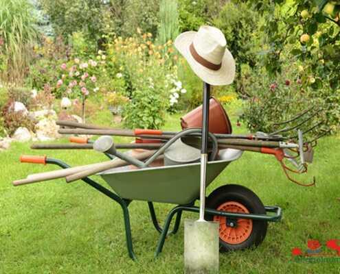 Gartenpflege33 1 495x400 Gartenpflege