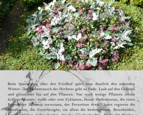 t02b 495x400 Blumen   Zeichen des Gedenkens